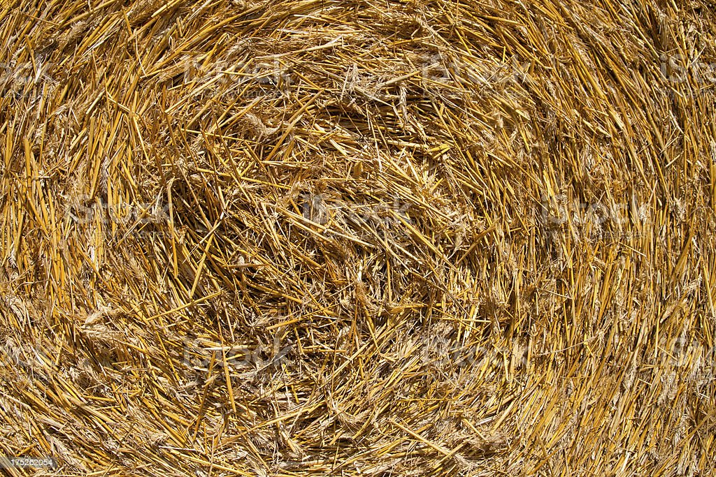 Circular straw bale royalty-free stock photo