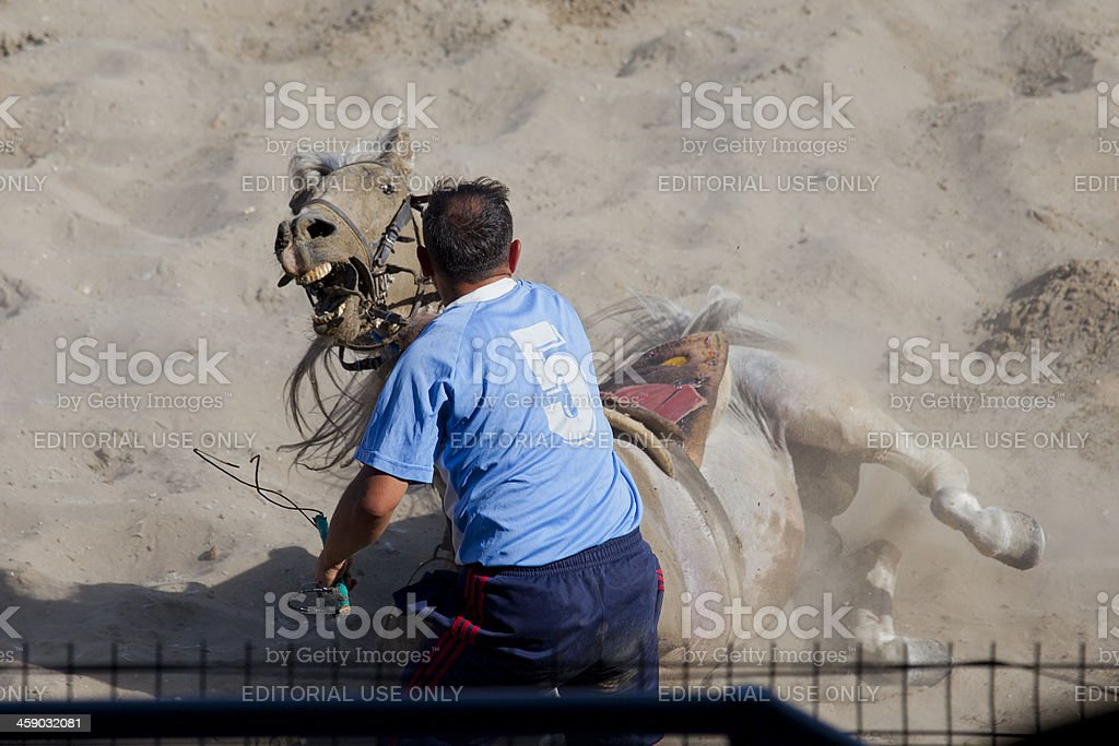 Cirit Player's Man and His Light Brown Horse royalty-free stock photo