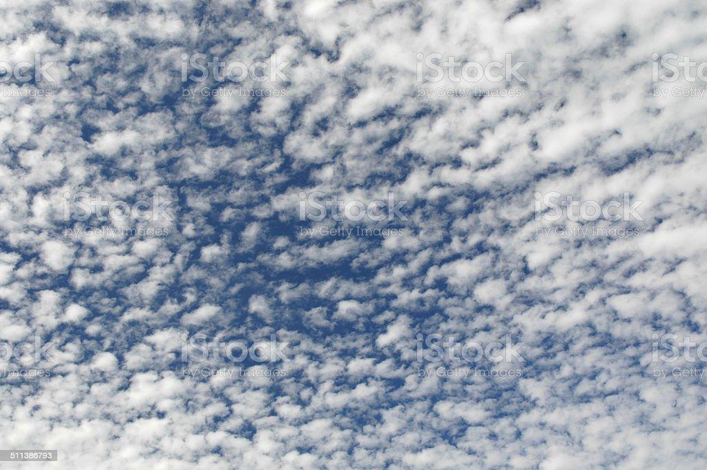 Cirrocumulus in deep blue sky stock photo