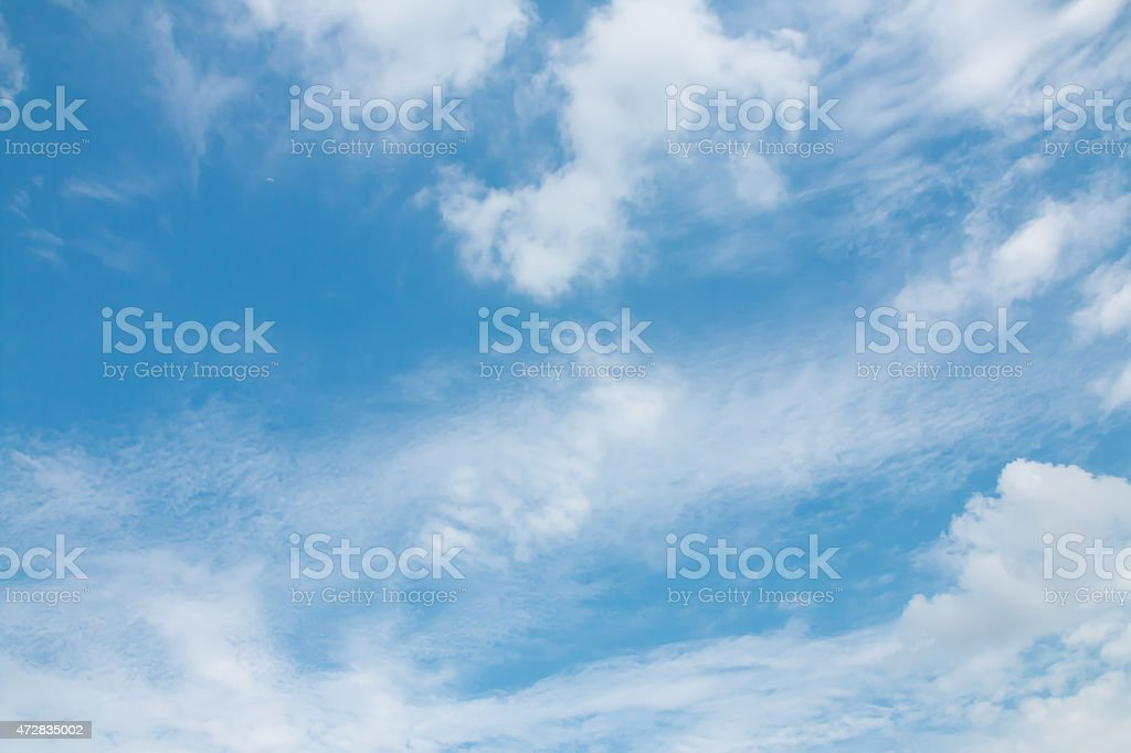 cirrus (spissatus) cloud on blue sky stock photo