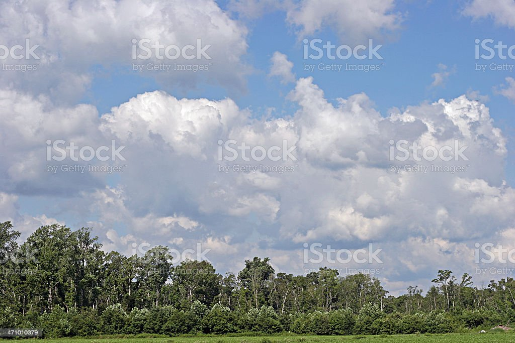 Cirrus-ly Cloudy Sky royalty-free stock photo