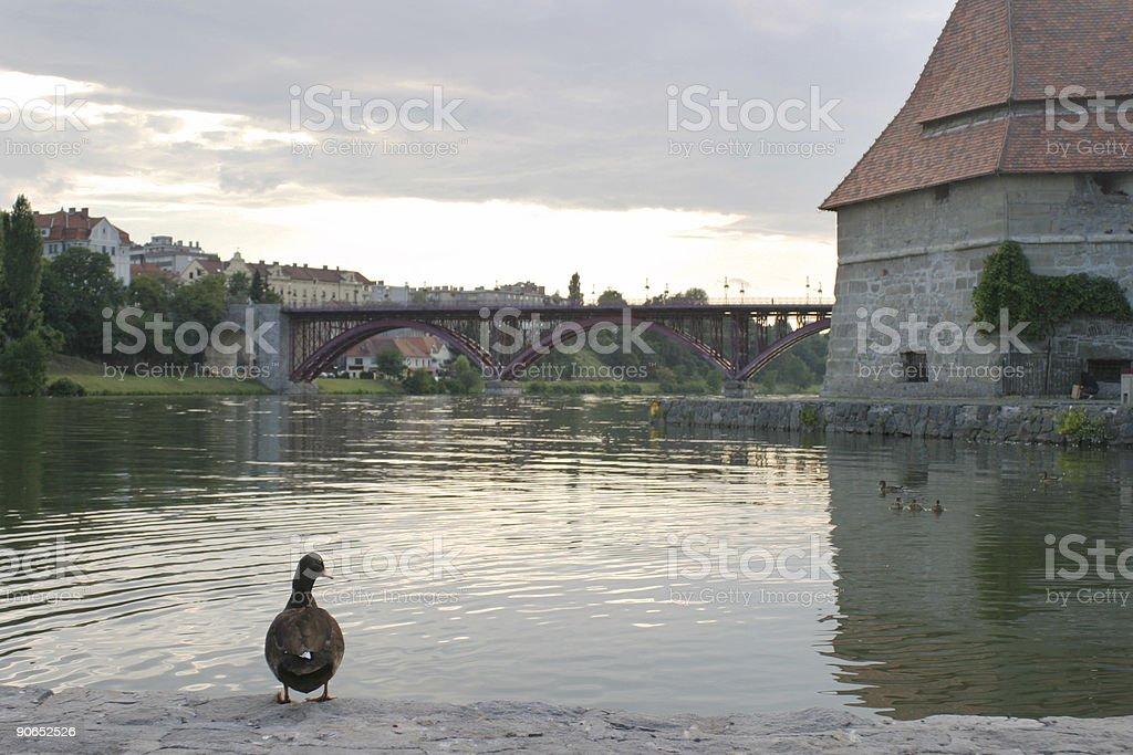 Citi of Maribor - Slovenia royalty-free stock photo
