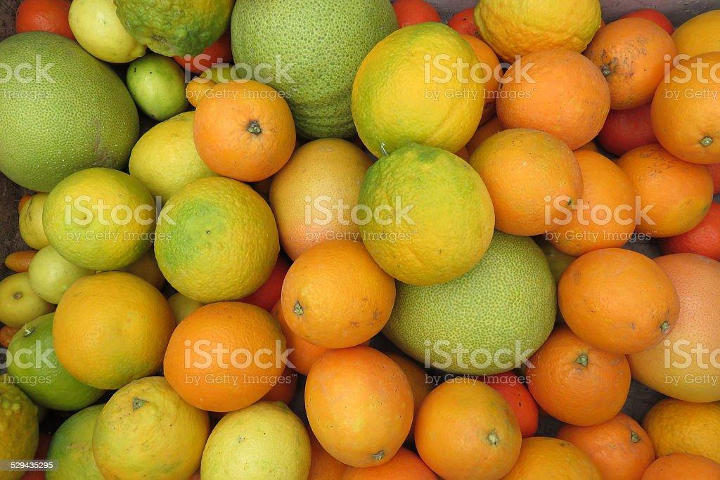 Citrus background stock photo