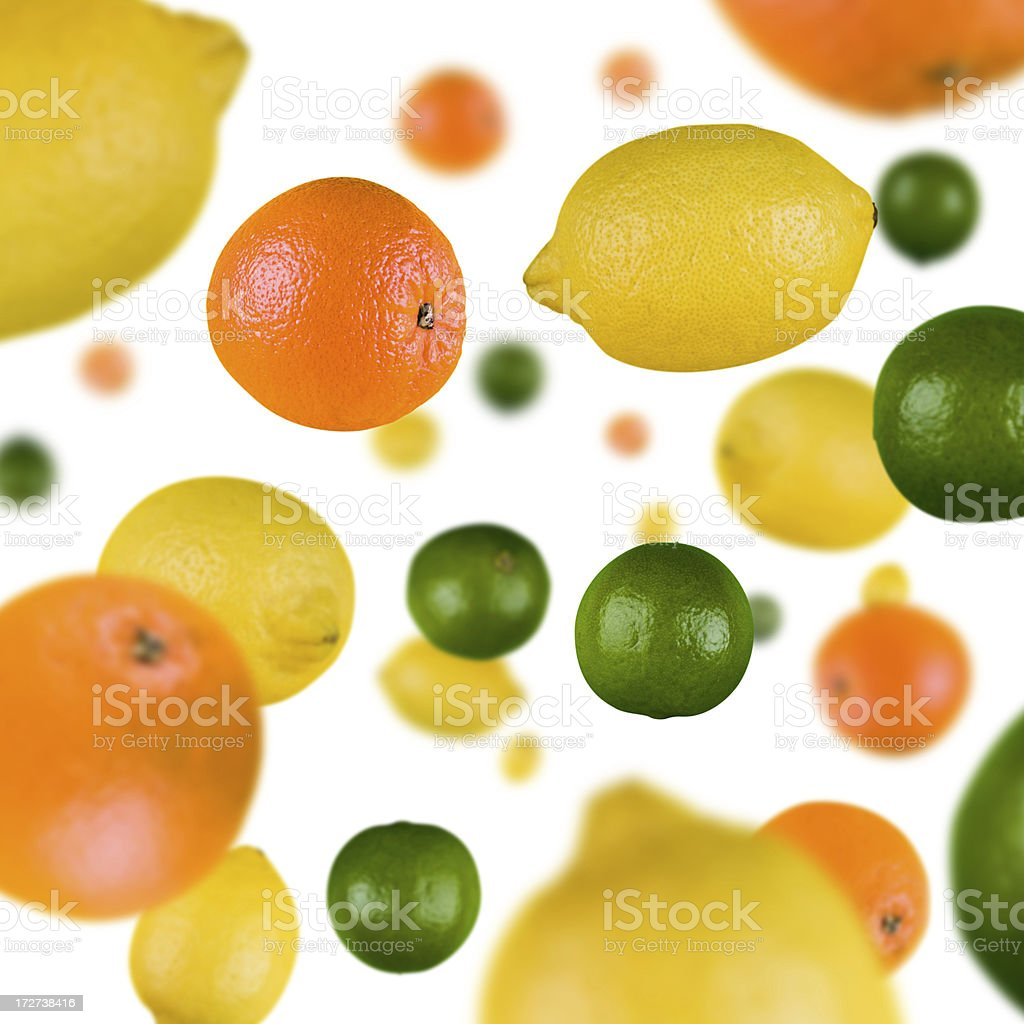 Citrus Explosion royalty-free stock photo