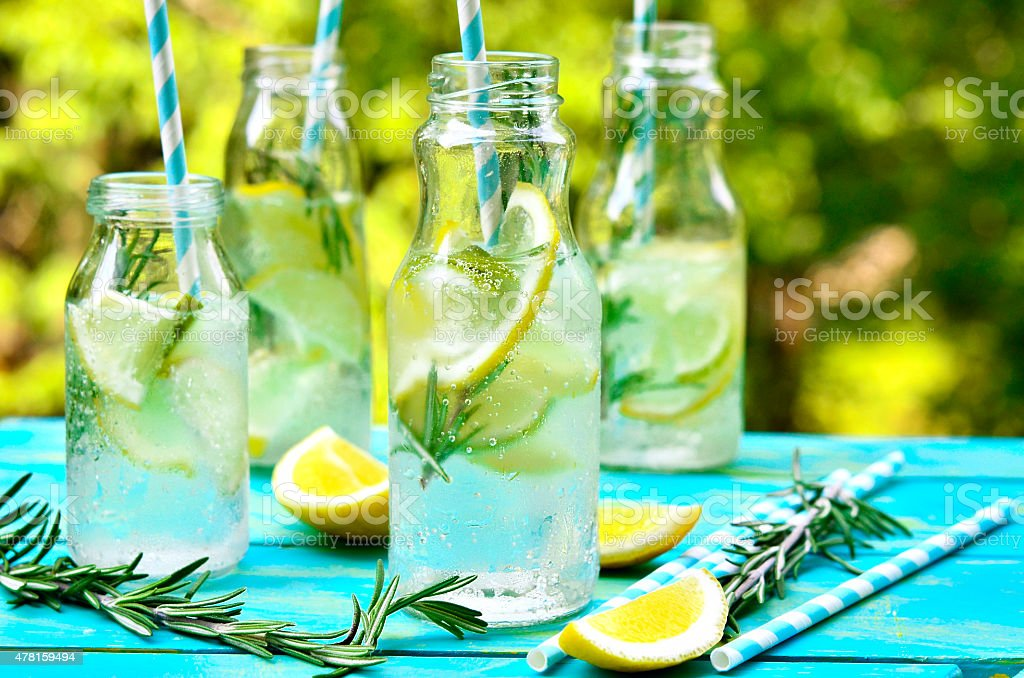 Citrus fizz with rosemary. stock photo
