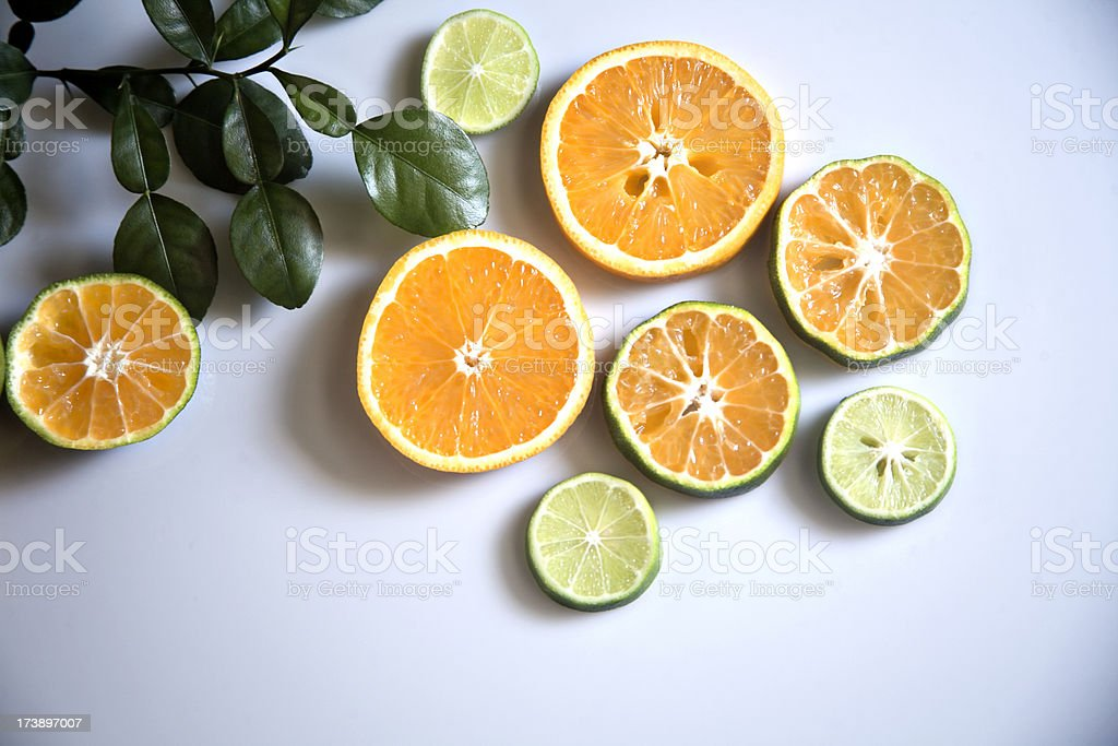 citrus fresh and cut in circles stock photo