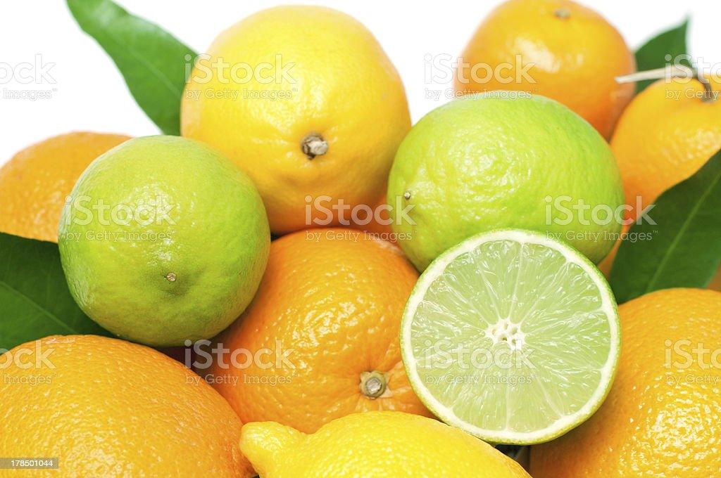 Agrumes fruits photo libre de droits