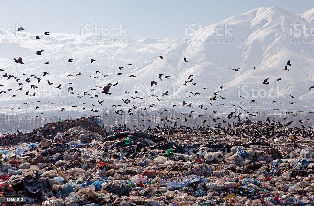 City Dump stock photo