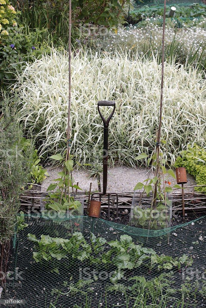 City Garden royalty-free stock photo