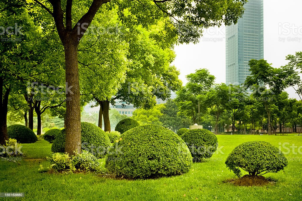 city garden stock photo