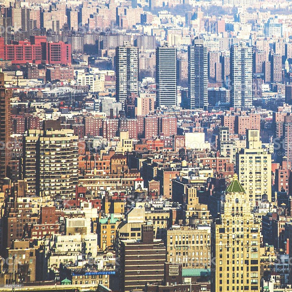 City jungle. stock photo