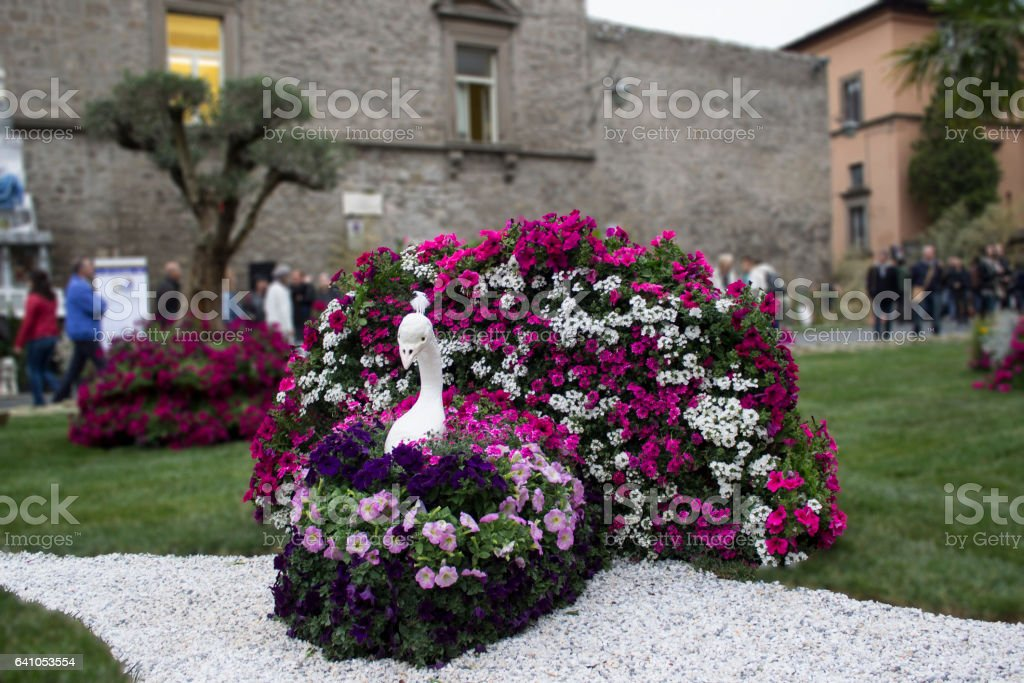 City of Popes dresses flowers stock photo