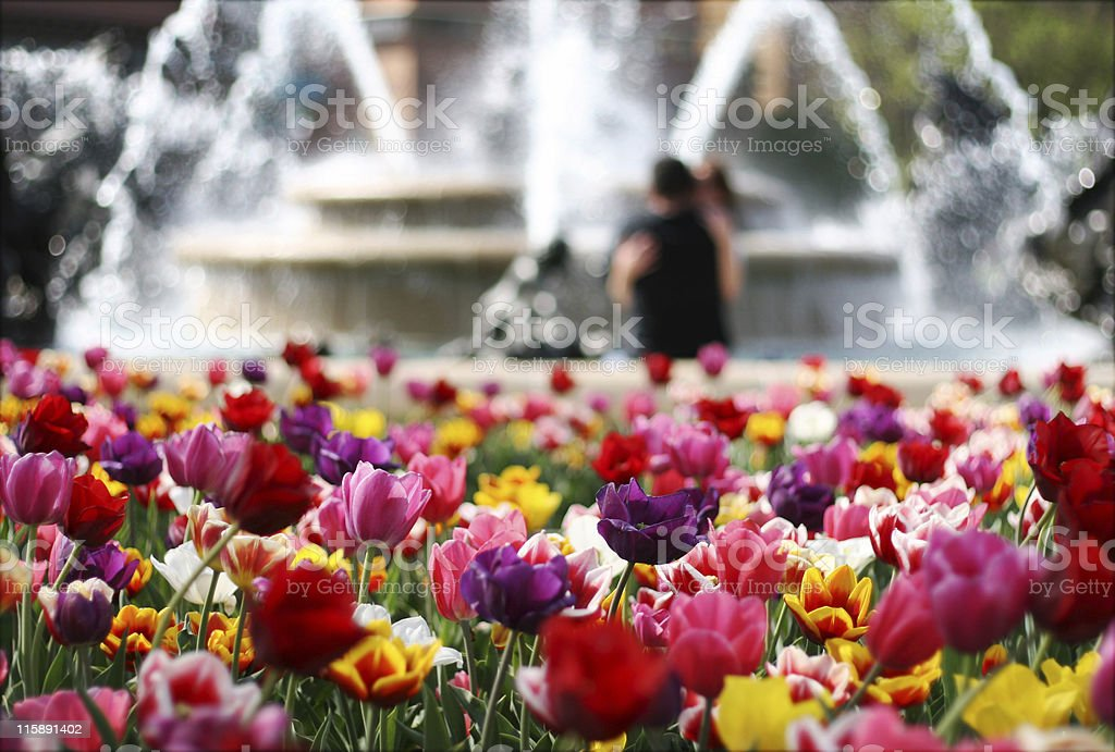 city of romance stock photo