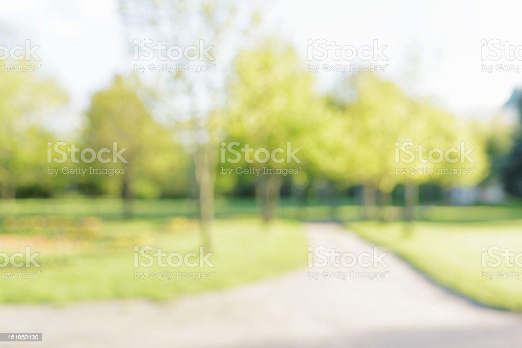 city park bokeh background 50mm lens stock photo