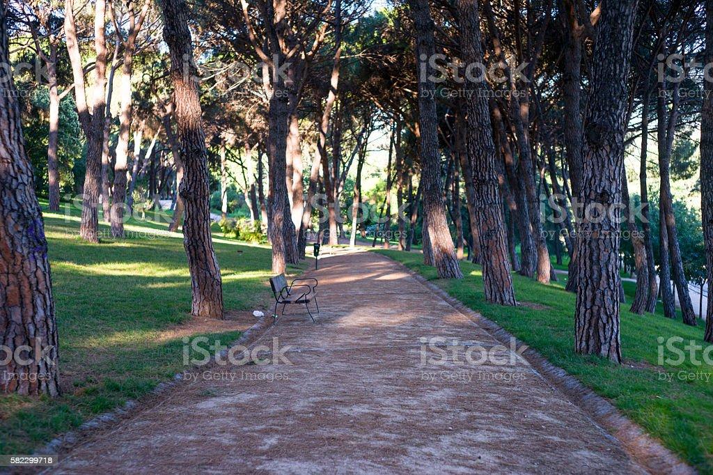 City park path stock photo