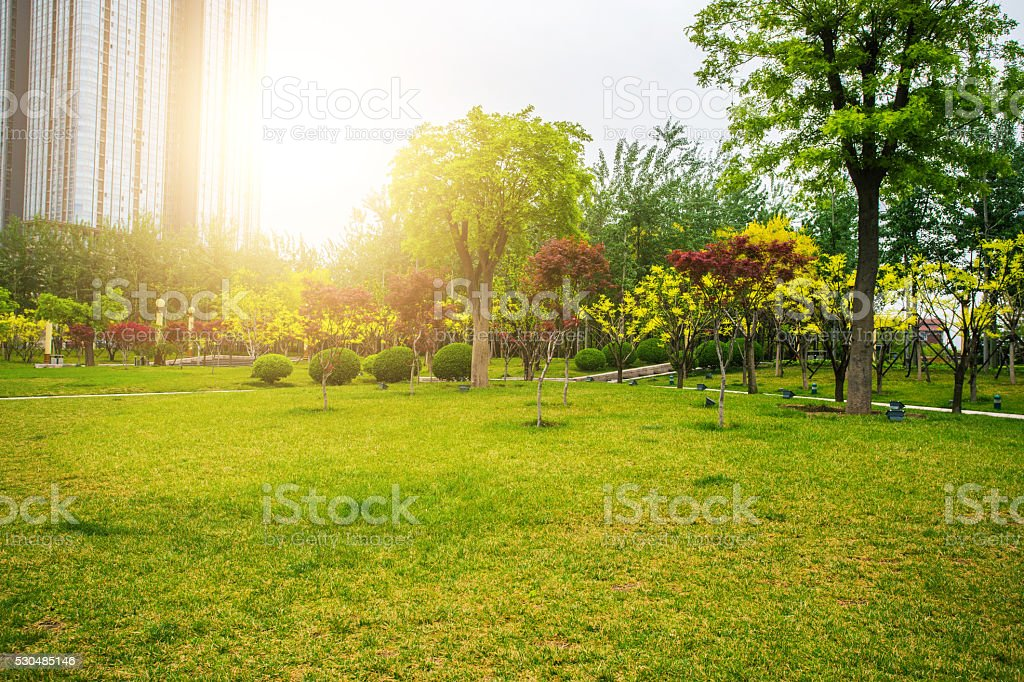 city park stock photo