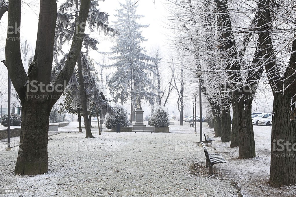City park under rime frost. Alba, Northern Italy. royalty-free stock photo