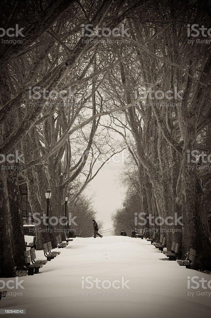 City Park's Snowy Path royalty-free stock photo