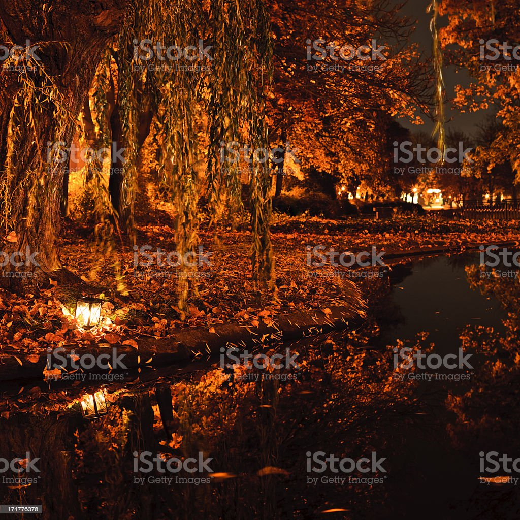 City pond at night royalty-free stock photo