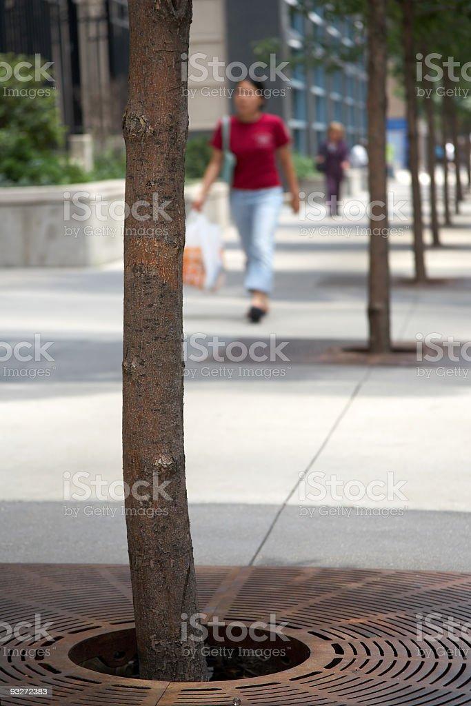 City Streets royalty-free stock photo