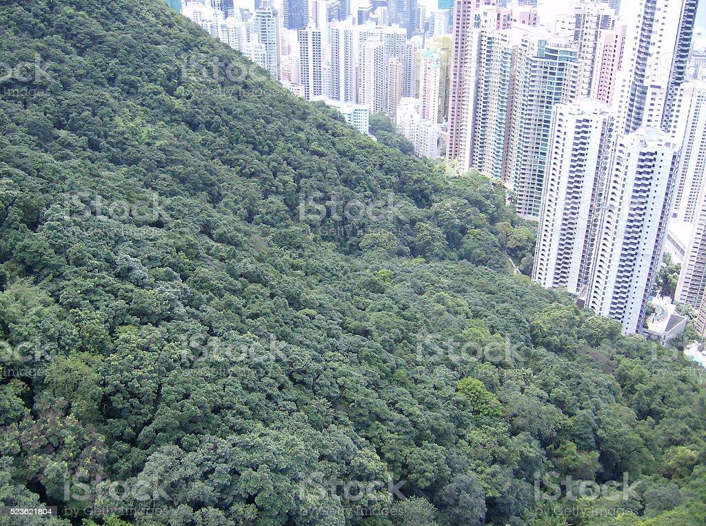 City vs Forest stock photo