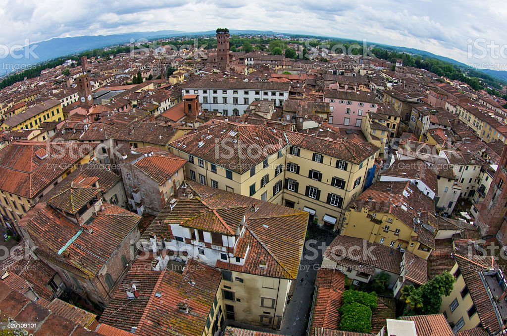 Cityscape of Lucca with Guinigi tower in front, Tuscany stock photo