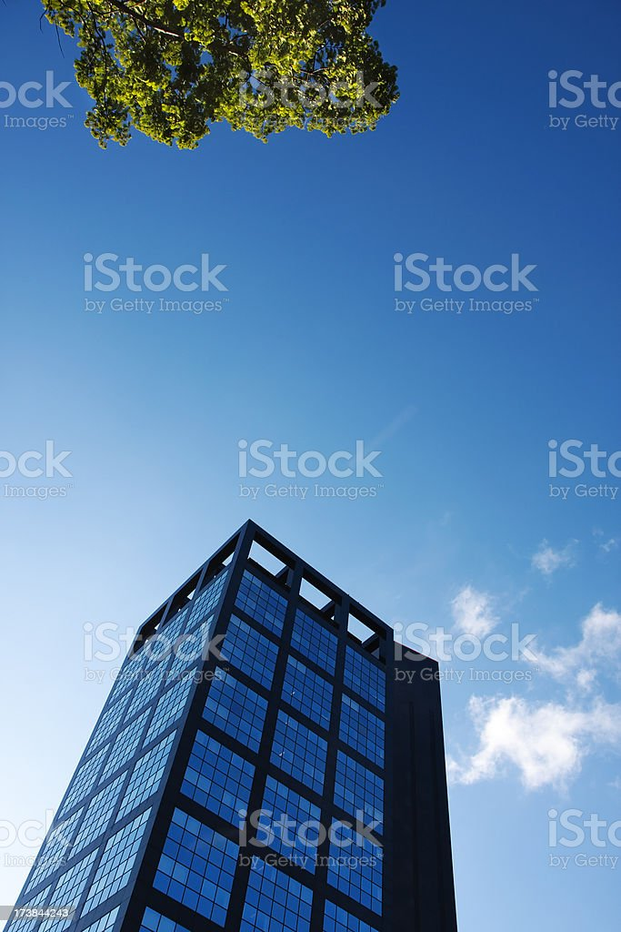 Cityscape with a large office building royalty-free stock photo