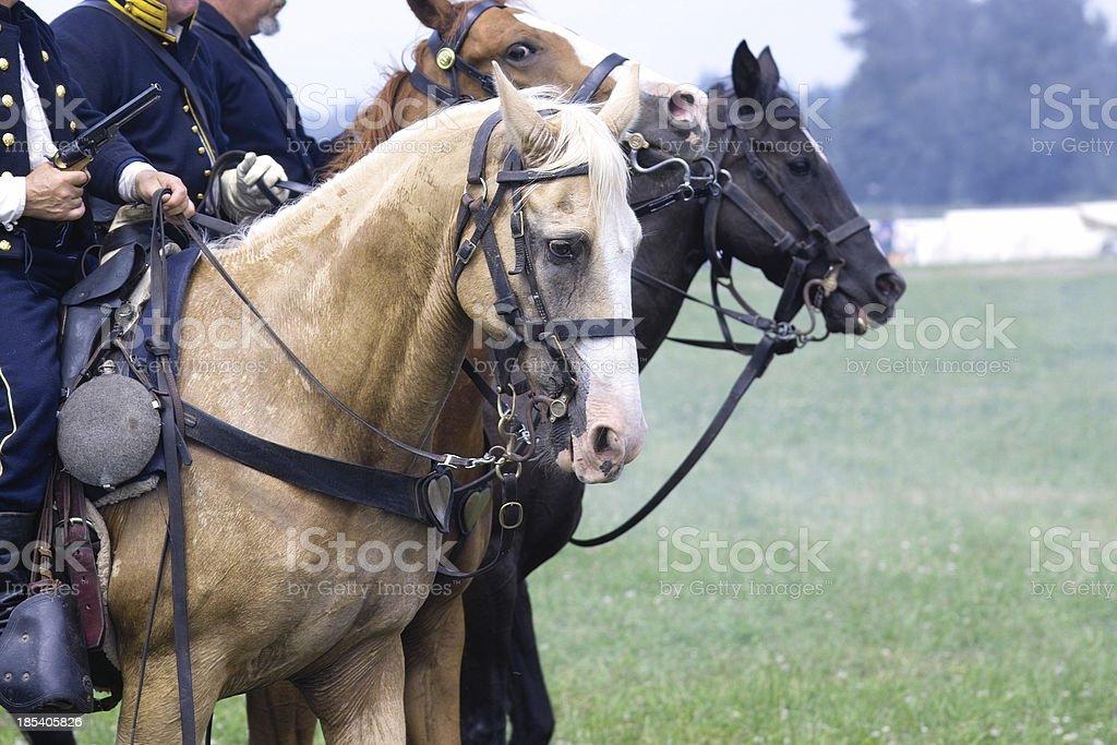 Civil War Cavalry stock photo