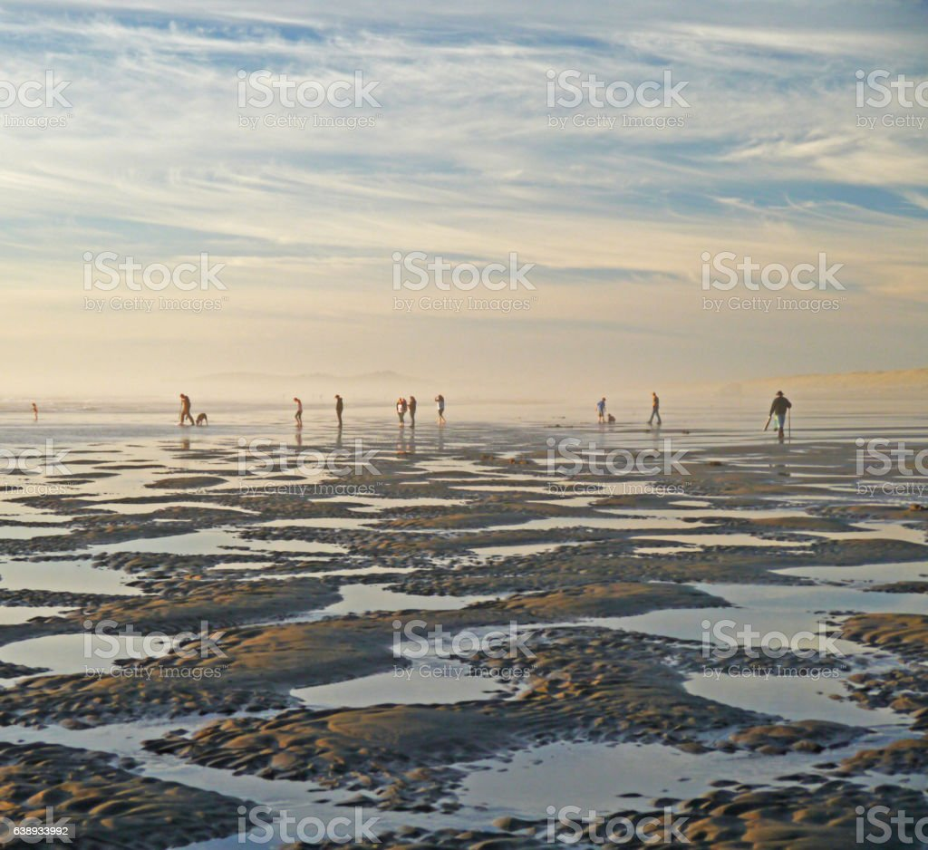 clam diggers stock photo
