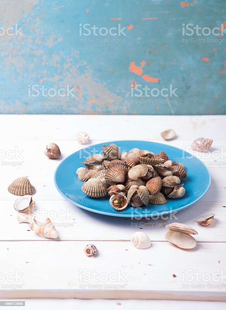Clam with shell on a blue plate on wood background stock photo