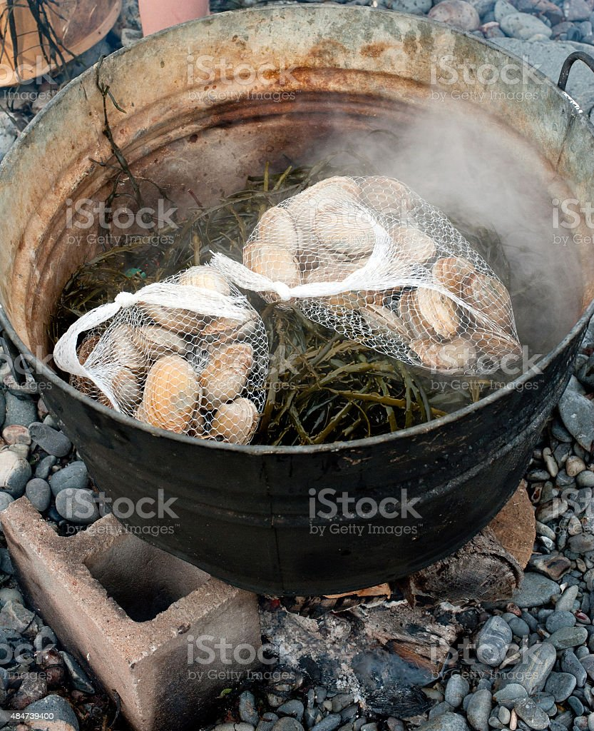 Clams, seaweed and lobster on a pot. stock photo