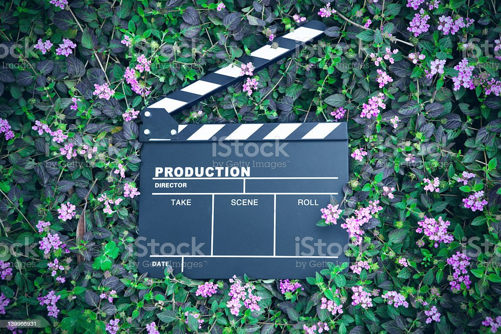 clapper board isolated on lawn royalty-free stock photo