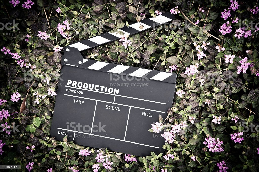 clapper board isolated on lawn stock photo