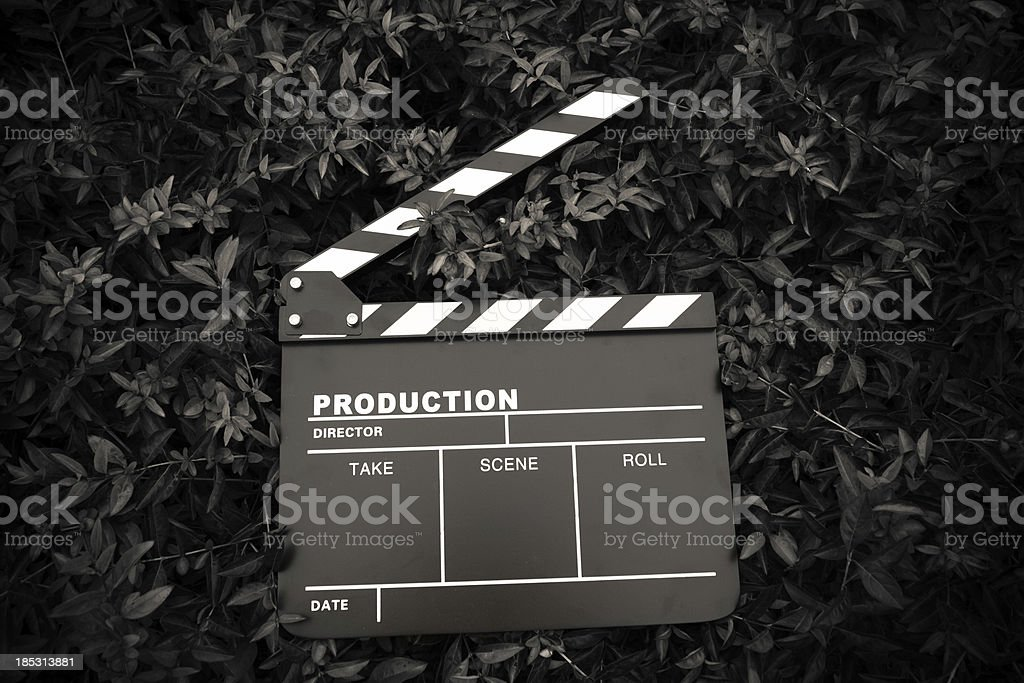 clapper board isolated on lawn(black & white) stock photo