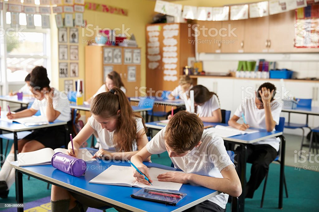 Class of primary school kids studying in a classroom stock photo