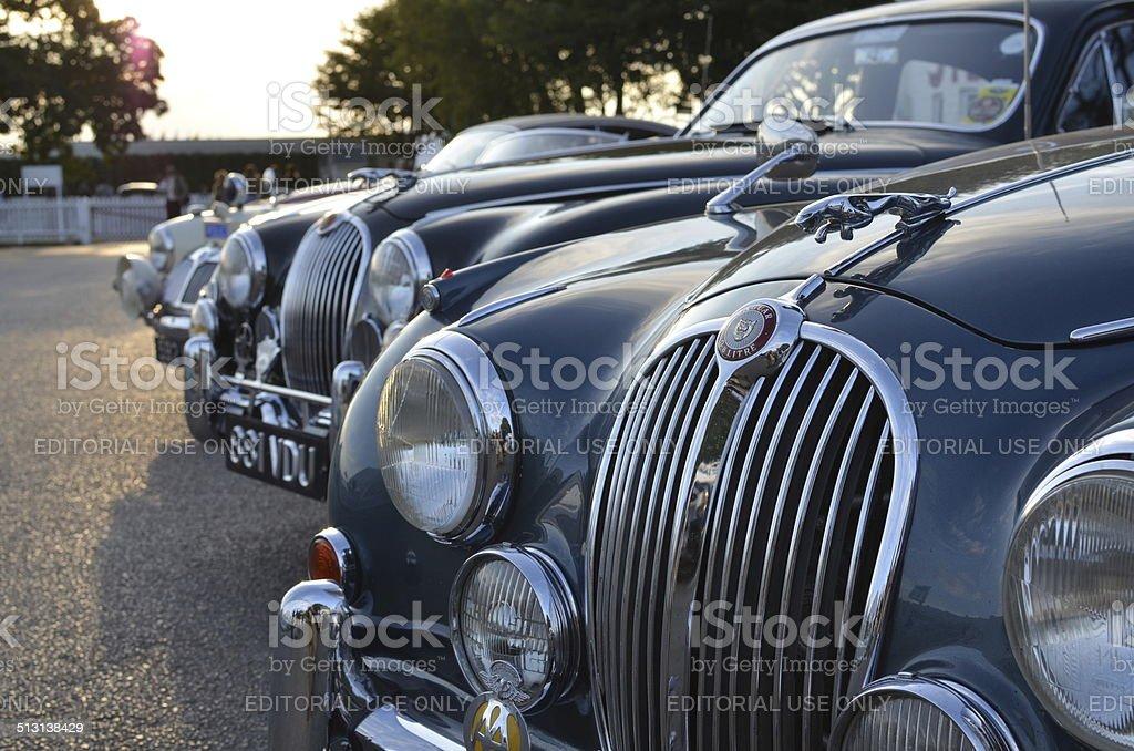 Classic Jaguar cars at the Goodwood Revival. stock photo