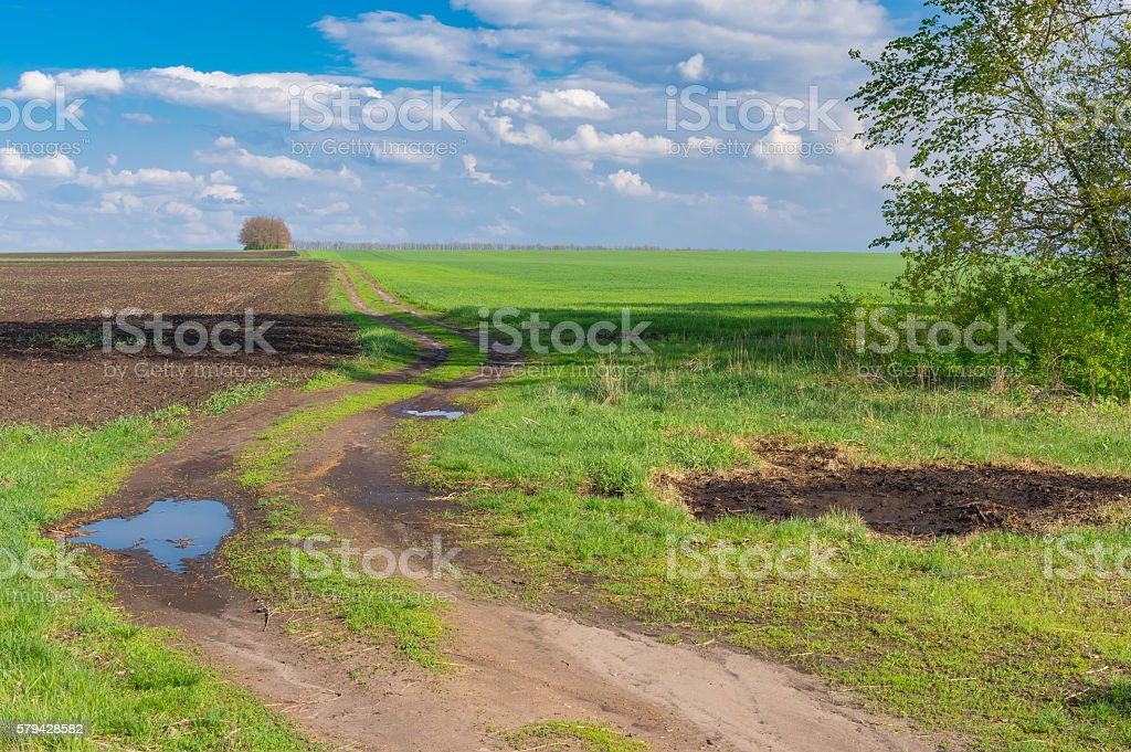 Classic landscape with earth road leading to agricultural fields stock photo