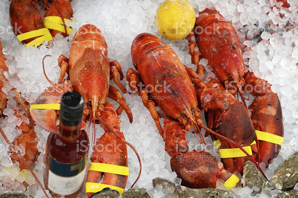 Classic Lobster royalty-free stock photo