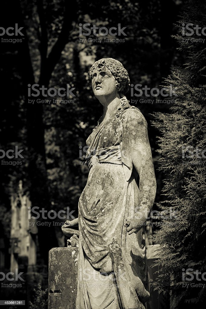 Classic Maiden looking at the sun royalty-free stock photo
