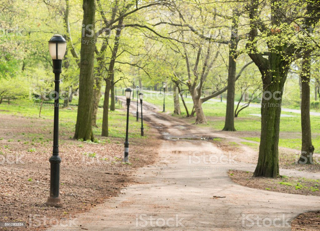 Classic NYC Riverside Park Tree Lined Path with Lamposts stock photo