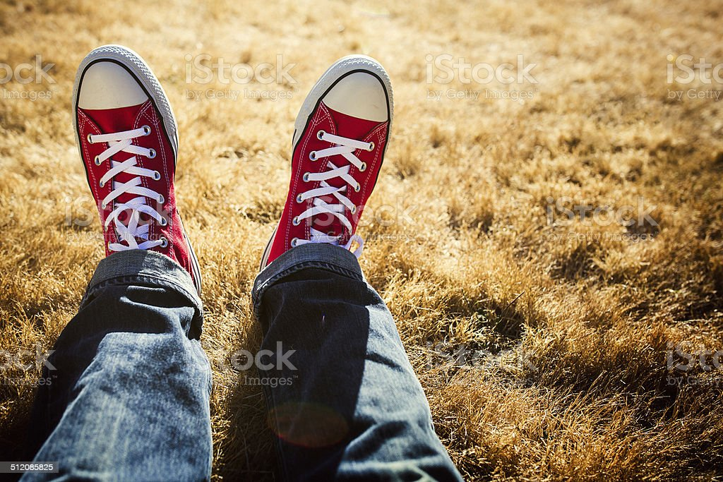 Classic Sneakers on Grass stock photo
