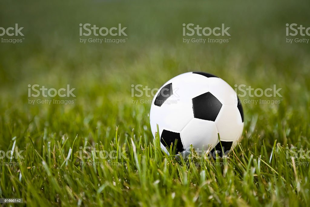 classic soccer ball in a field of grass royalty-free stock photo