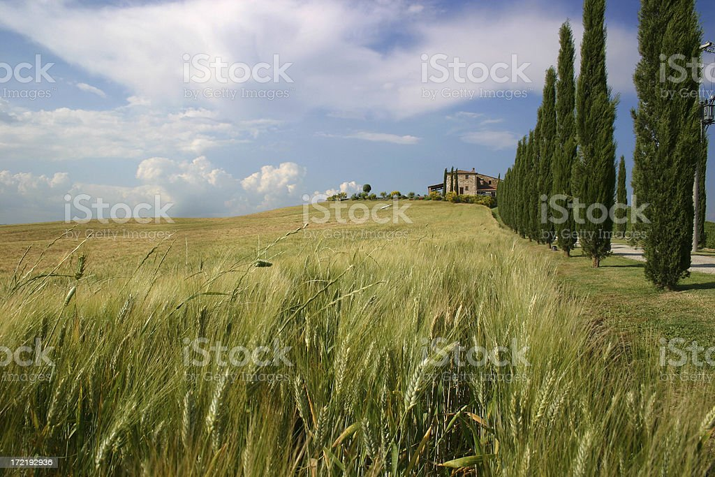 Classic Tuscan Farmhouse royalty-free stock photo