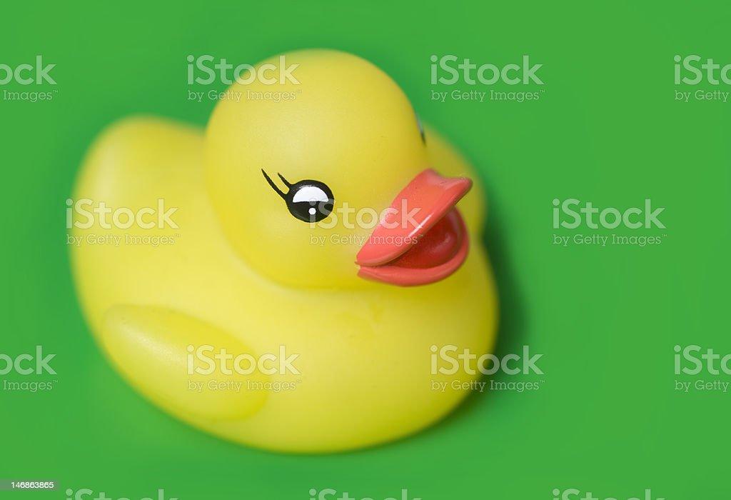 Classic Yellow Rubber Duck stock photo