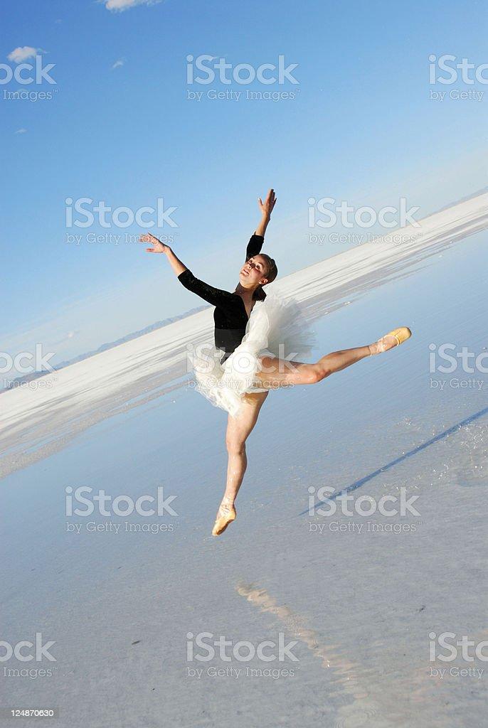 Classical Dance On The Salt Flats Of Utah royalty-free stock photo