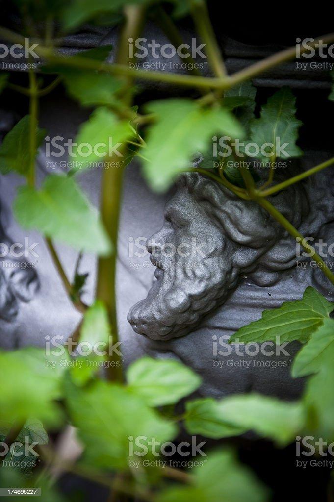 Classical greek mythology human face Botanical Gardens South Australia. royalty-free stock photo