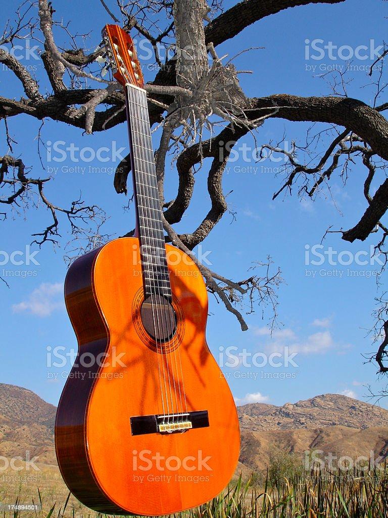 Classical Guitar stock photo