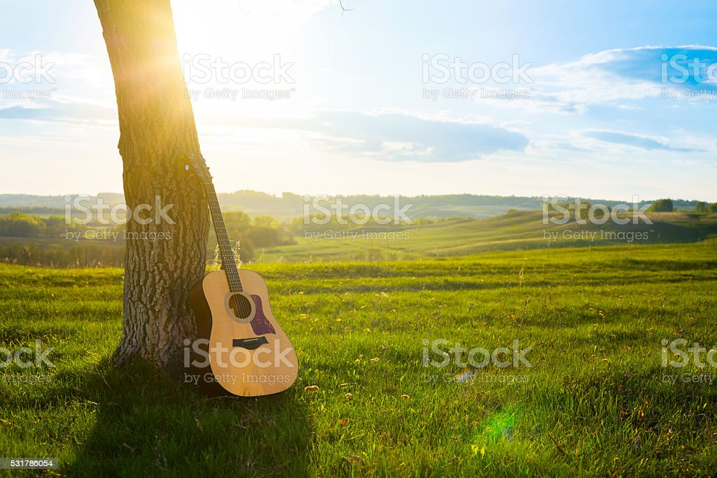 classical guitar propped against a tree trunk stock photo