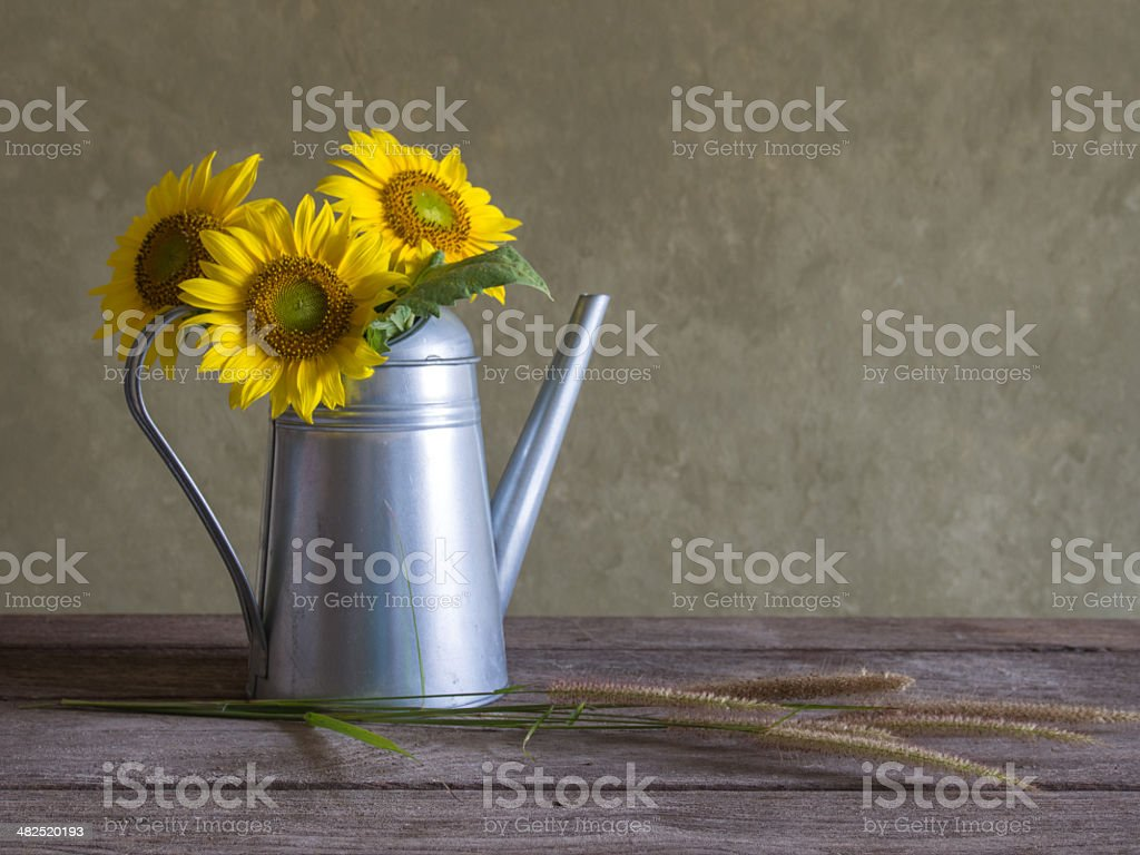 Classical still life with beautiful sunflowers bouquet royalty-free stock photo
