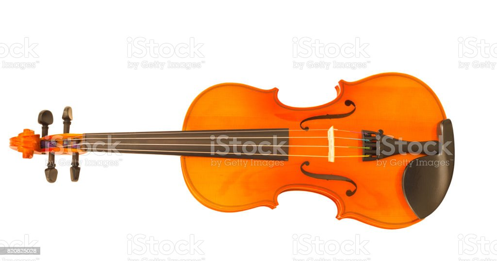 classical violin on white background stock photo